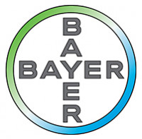 B-Bayer_Cross_4c