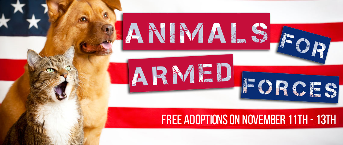 Animals For Armed Services Page Art